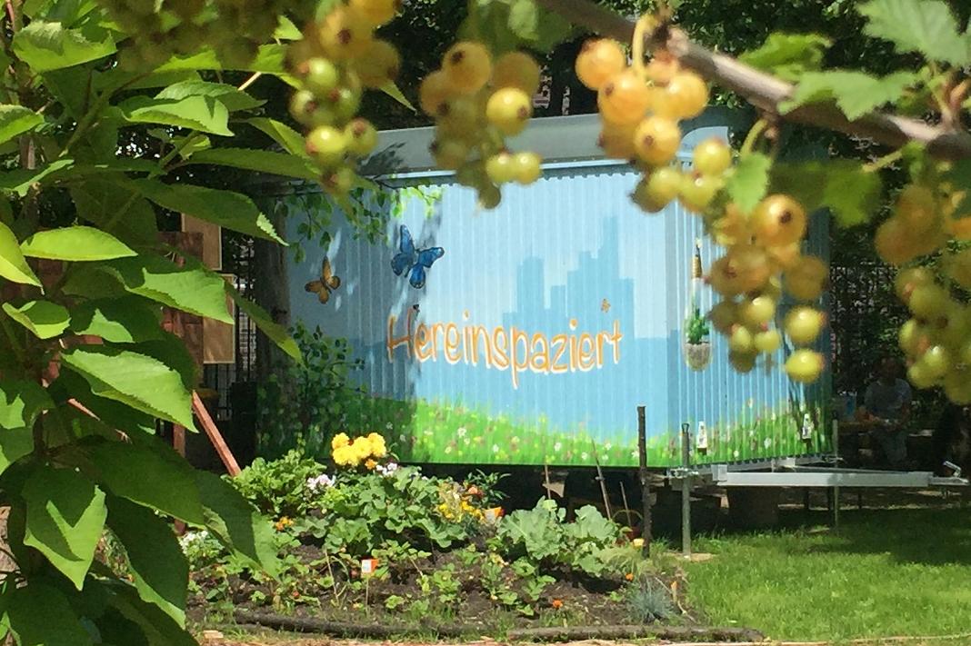 Im Vattenfall Garten an der Köpenicker Straße am Heizkraftwerk Mitte können Nachbarn Blumen, Beeren oder Bohnen pflanzen