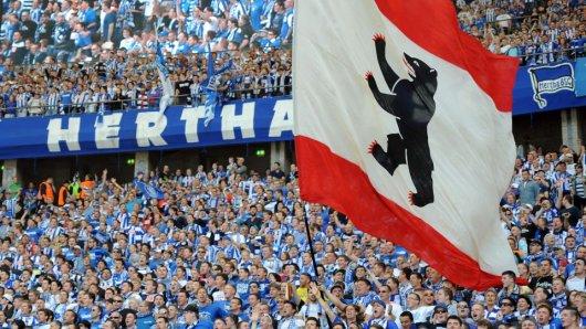 Hertha-Fans mit Berlin-Flagge im Olympiastadion (Quelle: dpa/Britta Pedersen)
