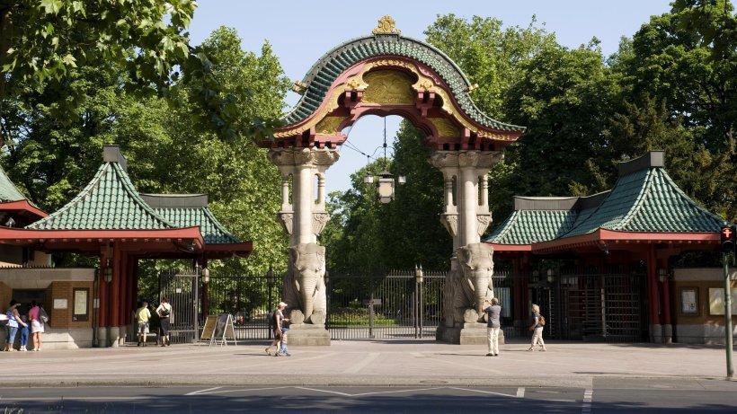 Für 250 Euro gehört Ihnen ein bisschen Zoo und Tierpark - Berlin - Aktuelle Nachrichten ...