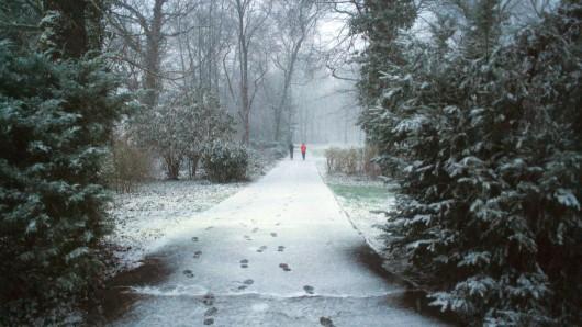 Der erste Schnee dieses Winters ist im Schlosspark Schönhausen in Berlin gefallen