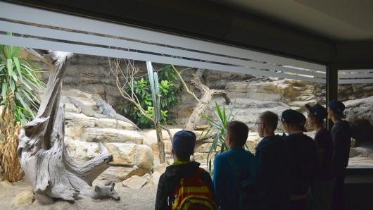 Seit heute ist das erste Obergeschoss des Aquariums für die zahlreichen Besucher wieder frei zugänglich.
