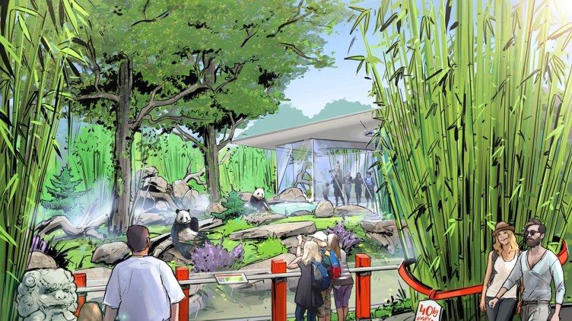 Zoo Exhibit Design Jobs