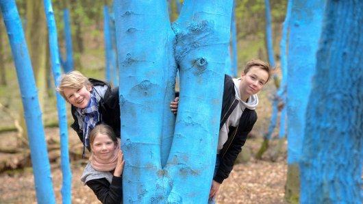 An der Station mit den blauen Bäumen: Lotta, Oskar und Anton (v.l.) können hier etwas über Kohlendioxid und den Wald lernen
