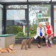 Ursula Hermann (l.) probt mit dem Suchhundeverein und Gründerin Katharina Pieper eine Rettungsübung