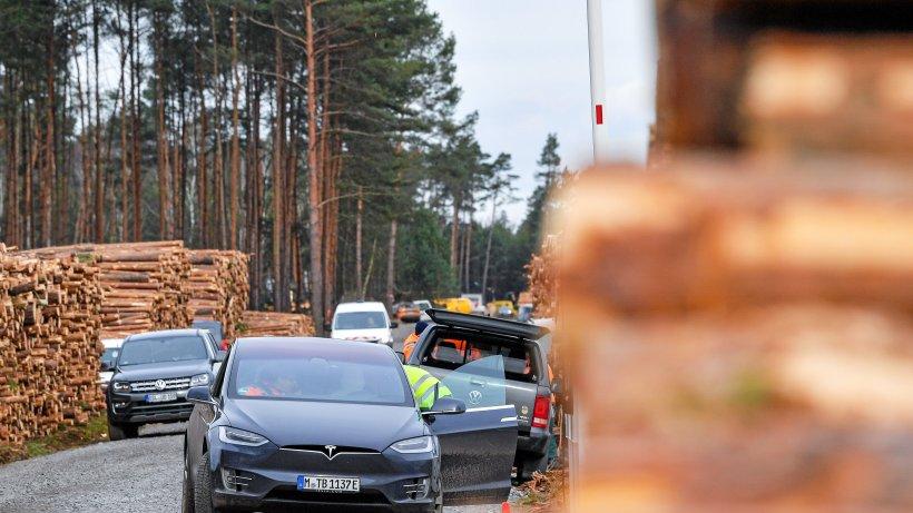 Tesla: Berlins Wirtschaftssenatorin Ramona Pop (Grüne) kritisiert Rodungsstopp