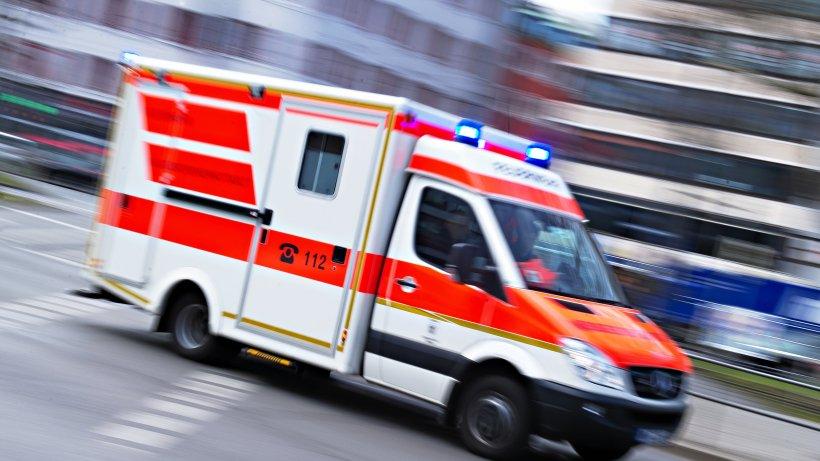 Polizeibericht Berlin: Leiche in Wald in Rathenow gefunden