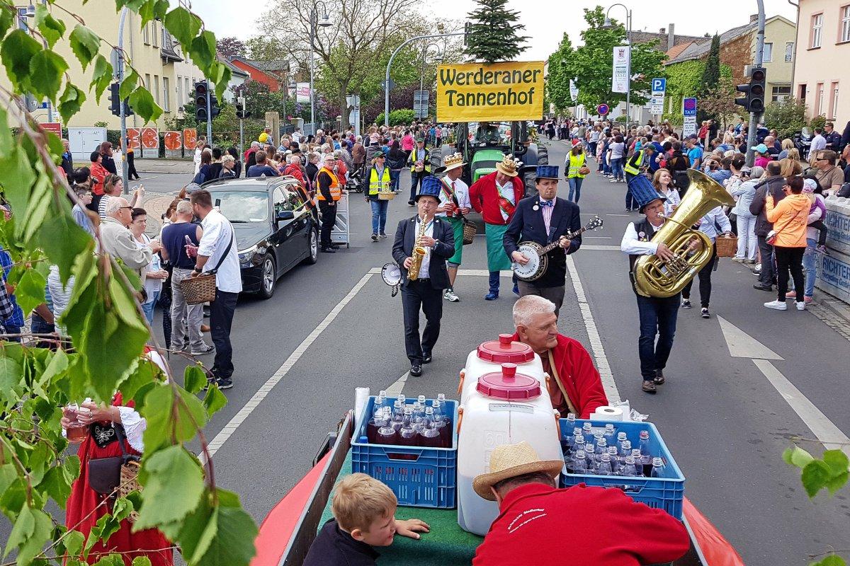 Baumblütenfest in Werder: Zu viel Gelage, zu wenig gute Ideen