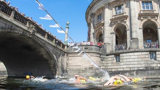 Die Schwimmer mussten einen Rundkurs von etwa 1000 Metern bewältigen