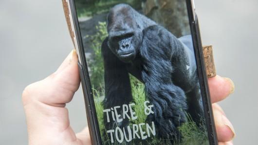 Tiere und Touren. So sieht die Startseite der neuen App aus