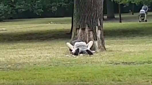 Das Paar hat Sex mitten im Park. Rechts oben im Bild eine Mutter mit Kinderwagen