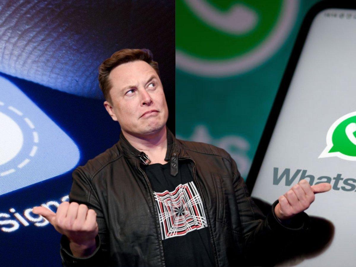 WhatsApp Ansturm auf Signal und Co. nach Empfehlung von Elon ...
