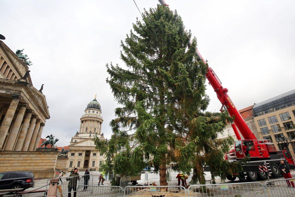 Weihnachtsbaume berlin marzahn