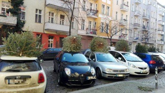 Unbekannte hatten mehrere Tannenbäume auf Autodächer in der Libauer Straße gehoben