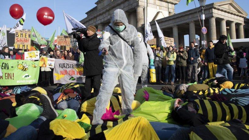 """""""Wir haben es satt"""" in Berlin: So bunt ist die Demo"""