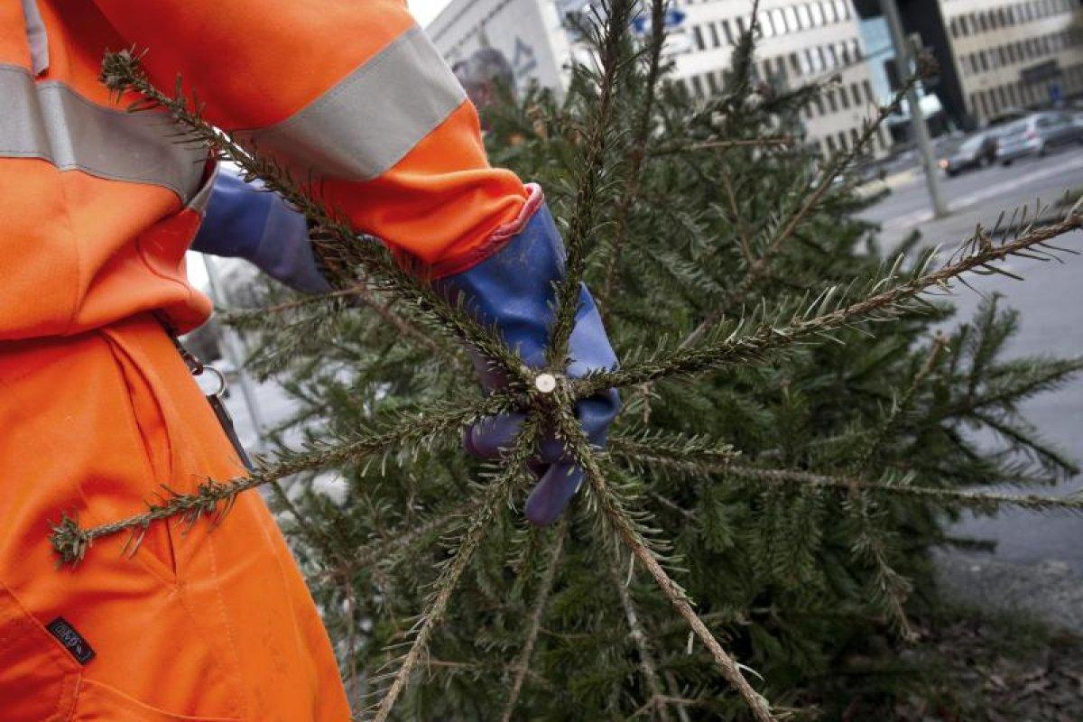 Stadtreiniger holen letzte Weihnachtsbäume ab