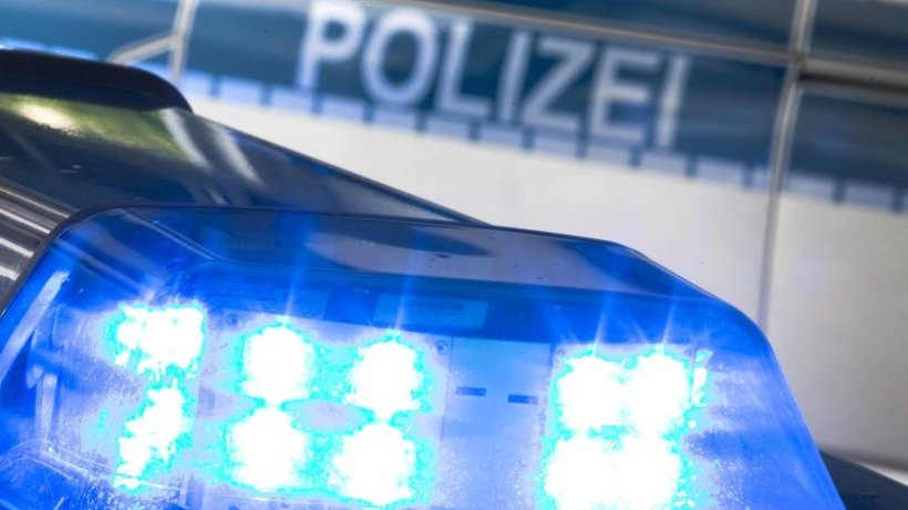 Kopf von Zigarettenschmuggler-Bande wird festgenommen