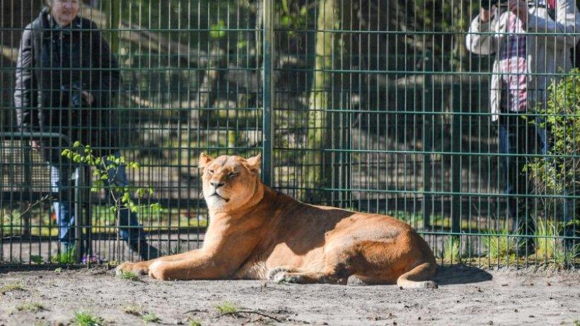Tierpark öffnung