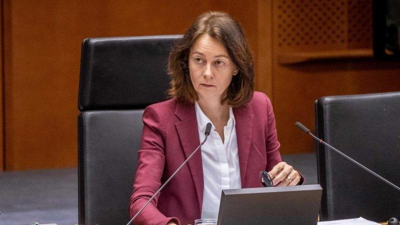 Europa-SPD will gegen Vorschlag zu EU-Agrarpolitik stimmen