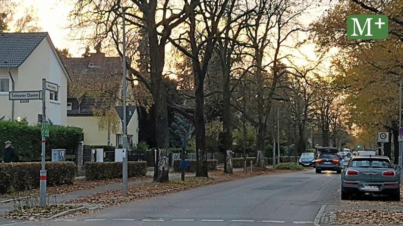 Nieritzweg