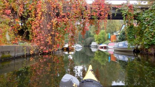 Diese Bilder zeigen, wie schön der Herbst in Berlin ist