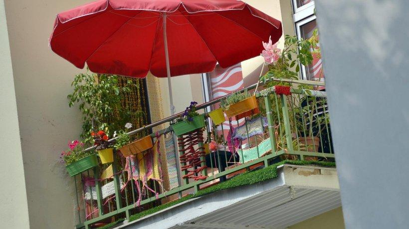So ziehen sie erfolgreich gemüse auf ihrem balkon   pape ...