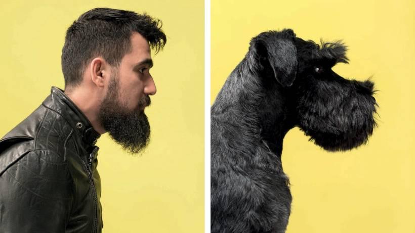 So ähnlich Sehen Sich Hund Und Mensch Vermischtes Berliner