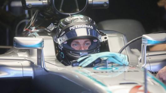 Nico Rosberg ist mit einem Sieg beim Grand Prix von Brasilien Formel-1-Weltmeister