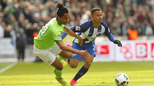 Energsich: Herthas-Mittelfeldspieler Allan (r.) im Zweikampf mit dem Wolfsburger Daniel Didavi