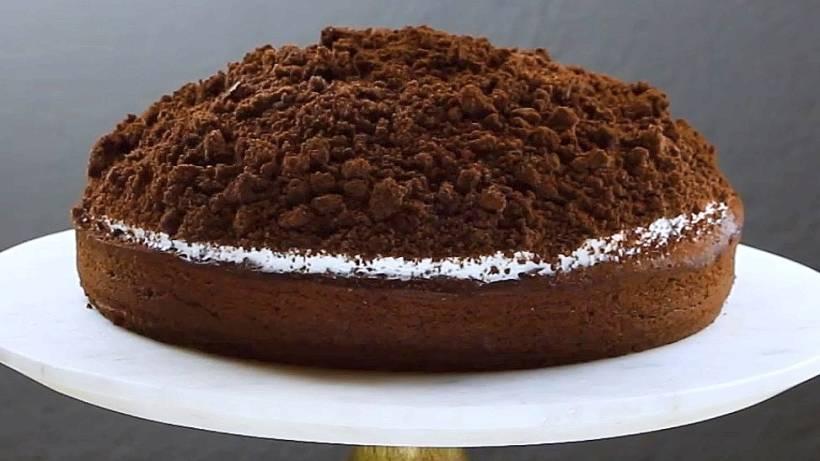 Im Video So Gelingt Der Perfekte Maulwurfkuchen Vermischtes