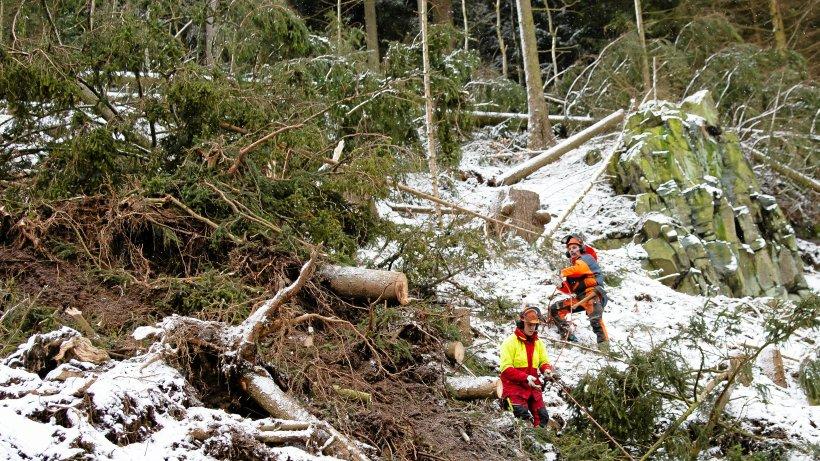 Newsblog: Orkantief: Waldarbeiter bei Aufräumarbeiten tödlich verletzt