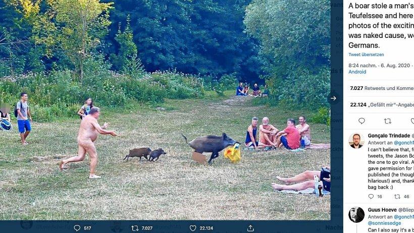 Wildschwein in Berlin klaut Nacktem am Teufelssee die Tasche